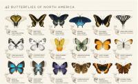 美好的動態蝴蝶 Gif 檔,認識 42 隻北美洲蝴蝶
