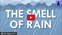 超神奇!你能用鼻子預測下雨嗎