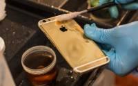 再貴也值得 金版 iPhone 6 原來是這樣逐部人手造出來 [圖庫]