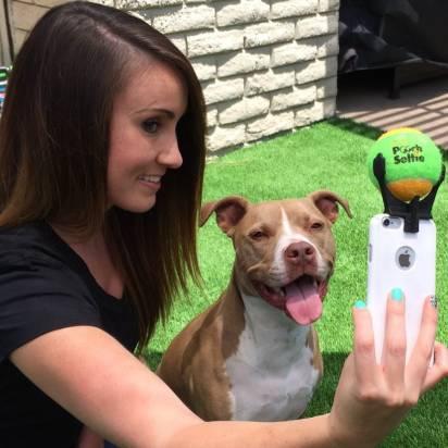 狗狗自拍神器,讓你的狗狗開始會看鏡頭