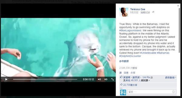 一個奶妹掉機,海豚撿機的溫馨故事就此展開…