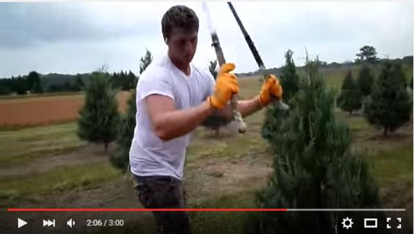 園丁雙刀流之修樹大法