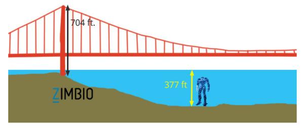 [Dimension]動漫迷的最愛卻是工程師最痛苦的夢魘 —《環太平洋》
