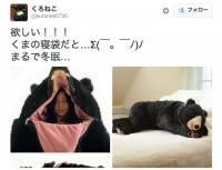 把拉拉熊睡袋打趴!遇到熊裝死可能有用(?)的真熊款睡袋