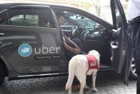 提供行動不便與隱性障礙族群便利的交通模式, Uber 在台灣推出 uberASSIST 關懷優步服務