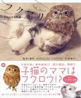 """大阪超有名的 """"貓頭鷹與小貓好朋友"""" 咖啡廳,推出雙貓寫真集"""