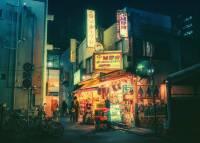 讓人很想找機會再去一次日本的夜間東京攝影集