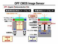 進光量更大 動態範圍更強, Panasonic 宣布將以有機薄膜 CMOS 技術生產影像感測器