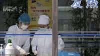 [科技新報]H7N9致死率36%,秋冬再戰