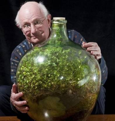 全球最小生態系「瓶中花園」已舉世隔離53年