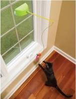 太陽能逗貓玩具-拯救家俱的好方法