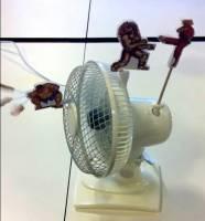 利用電風扇出風與擺動轉頭的特性,呈現快打旋風(街霸)上特定人物絕招
