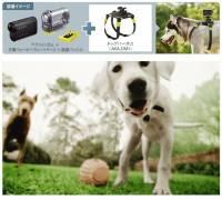 讓你可以用狗狗的觀點看世界,Sony AKA-DM1攝影用配件