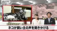 ヾ =゚・゚= ノニャン♪ 東大實驗證明貓兒會認主人