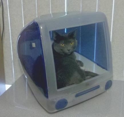 用舊iMac彩殼打造毛孩子的新窩