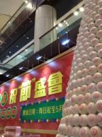 香港微縮展 2013